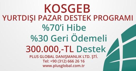 Yurtdışı Pazar Destek Programı KOSGEB